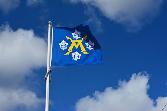Turku - kaupungin vaakunalippu